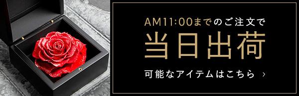 AM11:00までのご注文で当日出荷 可能なアイテムはこちら